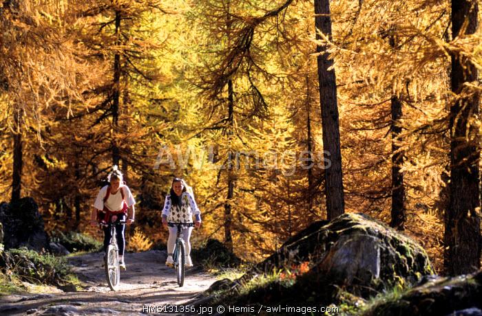 France, Savoie, le Monal, mountain biking
