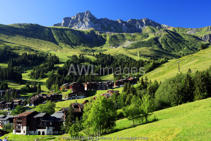 France, Savoie, Valmorel and the Grand Nielard peak in the background