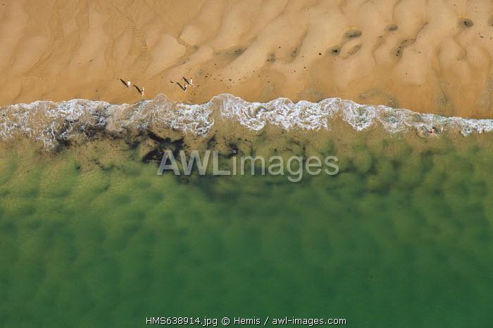 France, Manche, Les Moitiers d'Allonne, the beach (aerial view)