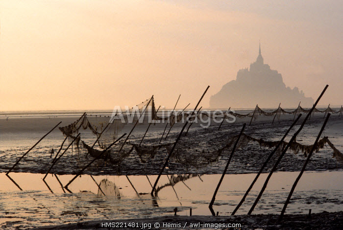 France, Manche, Mont Saint Michel, listed as World Heritage by UNESCO, mount and bay at sunrise