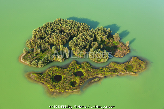 France, Seine Maritime, Jumieges, marsh Jumieges, island in a sand of Seine valley (aerial view)