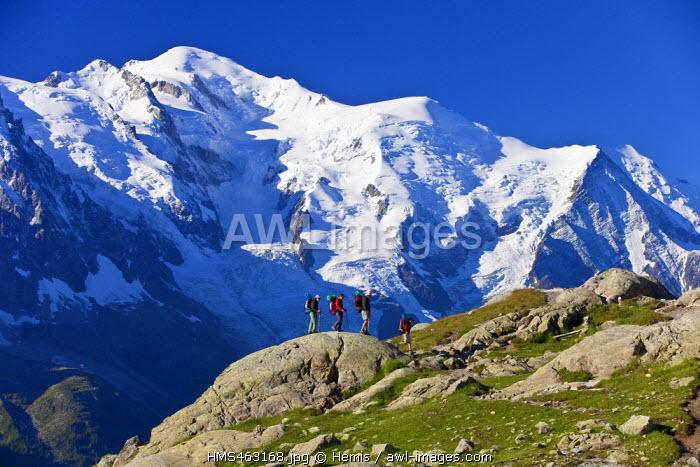 France, Haute Savoie, Chamonix Mont Blanc, a view on the Mont Blanc (4810m) since the Reserve naturelle nationale des Aiguilles Rouges (Aiguilles Rouges National Nature Reserve)