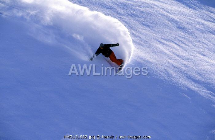 France, Savoie, Trois Vallees ski area, Meribel, surfer in the powder snow