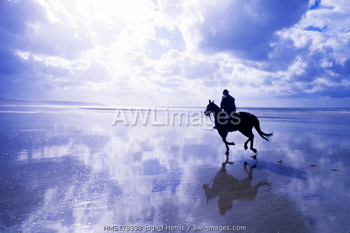 France, Calvados, Pays d'Auge, Deauville, Beach