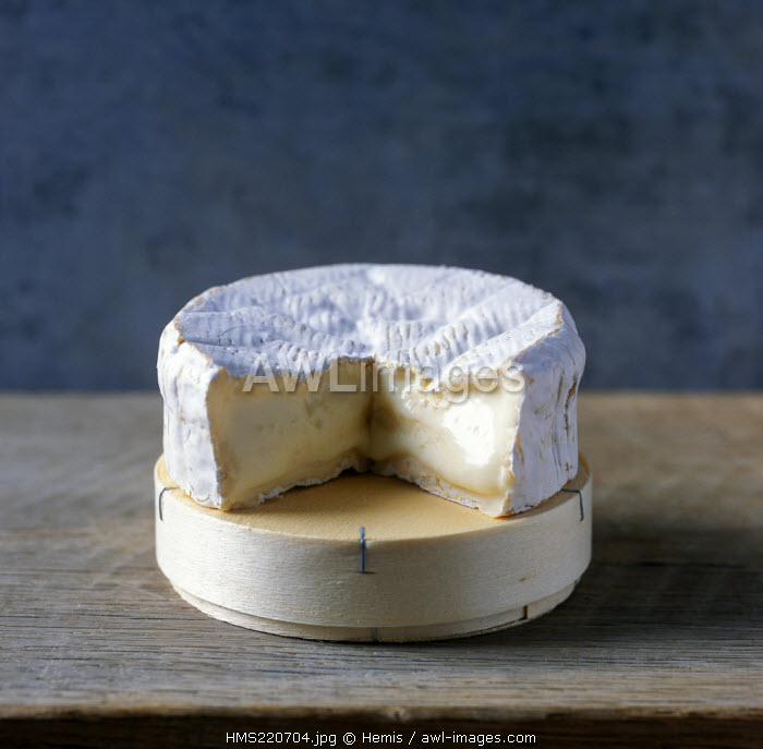 France, Calvados, Pays d'Auge, AOC Camembert de Normandie, soft fermented cheese made with cow milk, flowered crust