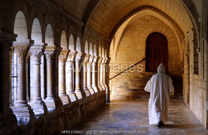 France, Drome, Montjoyer, Notre Dame d'Aiguebelle cistercian abbey, cloister