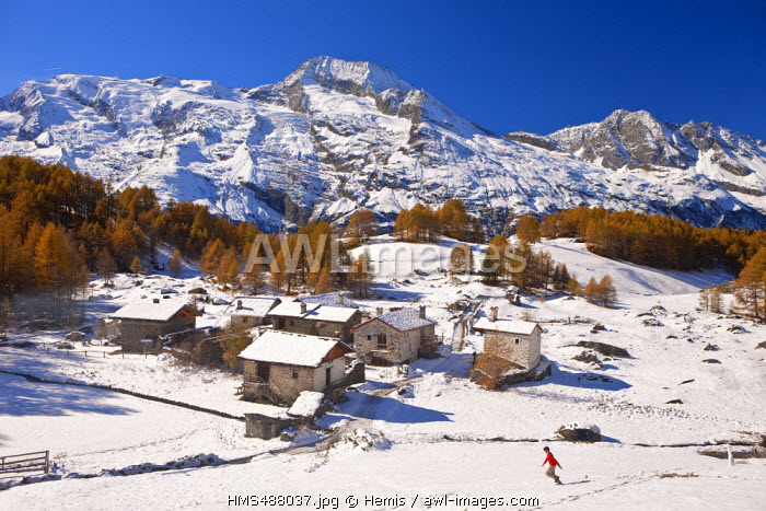 France, Savoie, Ste Foy Tarentaise, the hamlet of high mountain pasture of Monal with view on Mont Pourri (Rotten Mount) (3779m) in Parc National de la Vanoise (National Park of Vanoise)