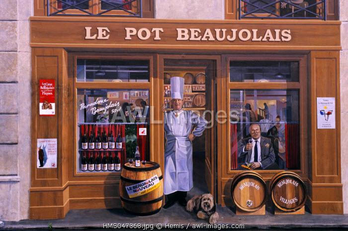 France, Rhone, Lyon, painted wall la Fresque des Lyonnais