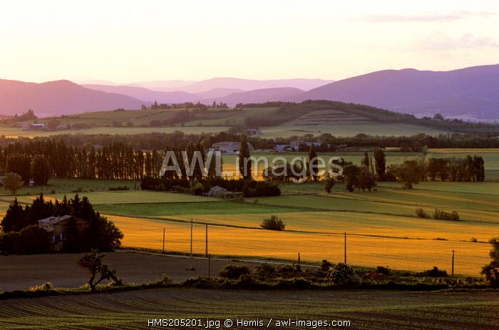 France, Drome, Drome Provencale, landscape near La Begude de Mazenc
