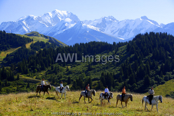 France, Savoie, Les Saisies, horseback riding in the Beaufortain massif, with the Mont Blanc in the background