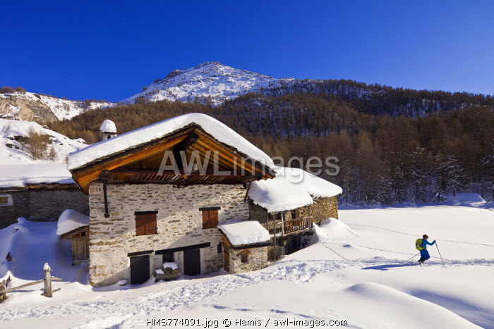 France, Savoie, Sainte Foy Tarentaise, the hamlet of high mountain pasture of Monal