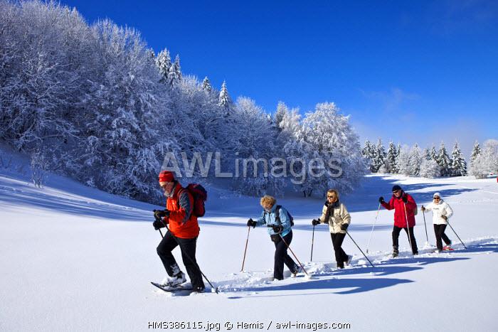 France, Savoie, Parc naturel regional du massif des Bauges, winter hiking in snow shoes