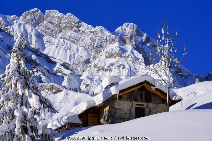 France, Savoie, La Giettaz, the Aravis mountain range in the background, La Blonni�re 2369 m