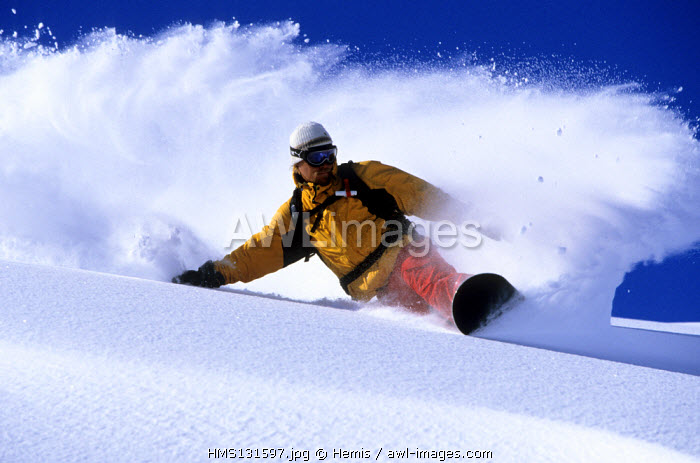 France, Savoie, Trois Vallees ski area, Meribel, surfer in the powder snow