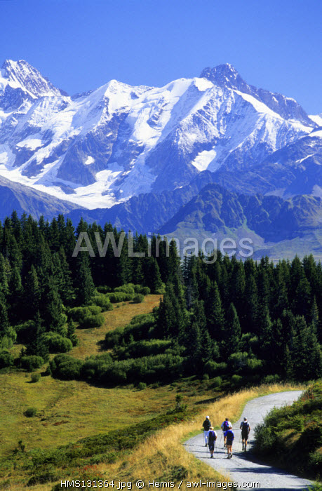 France, Savoie, hiking in Les Saisies, with the Mont Blanc in the Background
