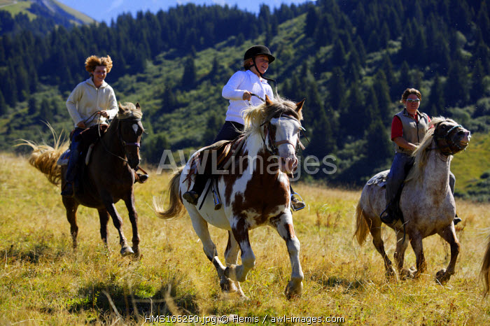 France, Savoie, Les Saisies, horseback riding in the Beaufortain massif