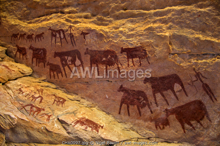 Chad, Taore Koaole, Ennedi, Sahara. Bichrome paintings of cattle and two human figures decorate the sandstone wall of a cave.