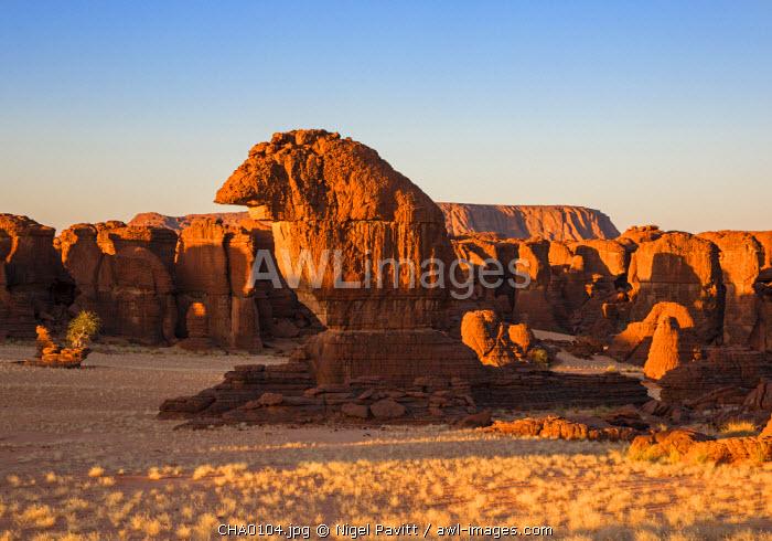 Chad, Abaike, Ennedi, Sahara. A large cluster of weathered sandstone columns in a desert landscape.
