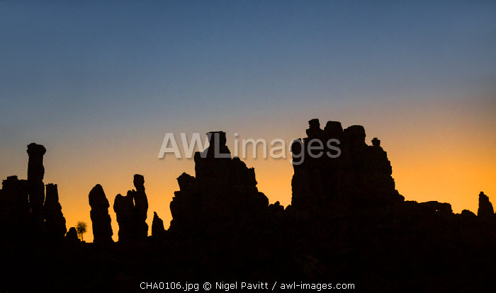 Chad, Abaike, Ennedi, Sahara. A striking cluster of weathered sandstone columns at dawn.