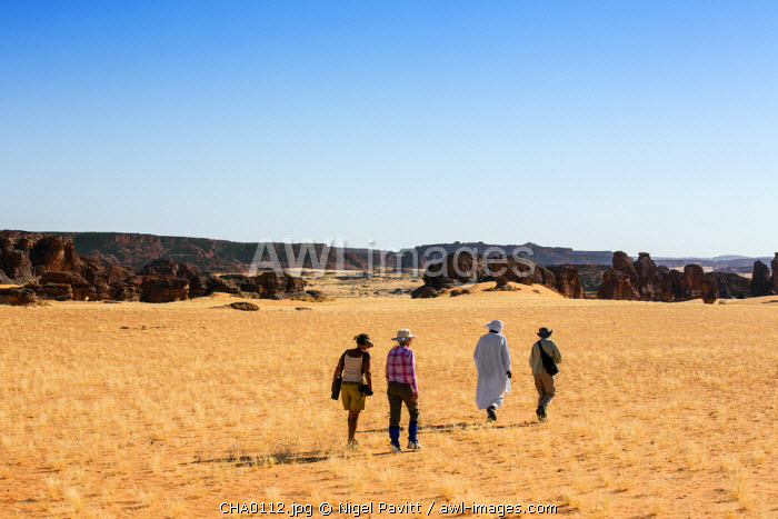 Chad, Abaike, Ennedi, Sahara. Visitors and a guide walking in the Abaike area.