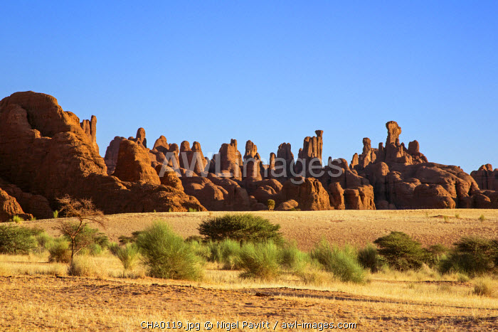 Chad, Bechike, Ennedi, Sahara. A spectacular landform of weathered Palaeozoic sandstone.