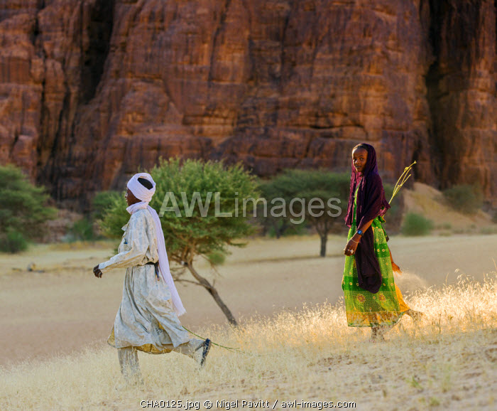 Chad, Bechike, Ennedi, Sahara. Toubou nomads on their way to water their family�s livestock at Bechike well.