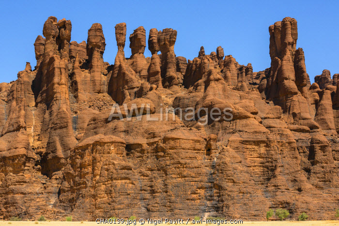 Chad, Kachabi, Ennedi, Sahara. A striking array of weathered red sandstone columns and pinnacles on a cliff near Kachabi.
