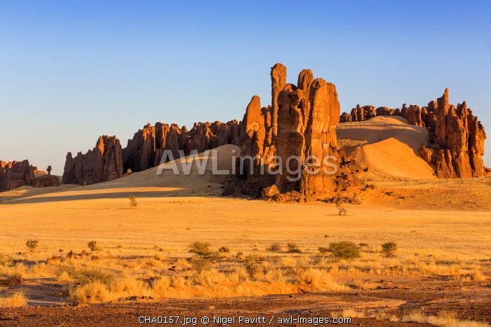 Chad, Chigeou, Ennedi, Sahara. A ridge of weathered red sandstone columns in a desert landscape.
