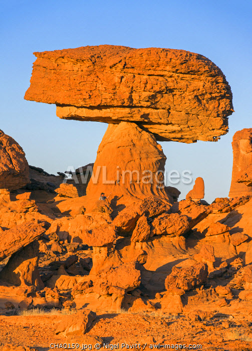 Chad, Chigeou, Ennedi, Sahara. A ridge of weathered red sandstone with a visitor giving scale to a giant mushroom-shaped feature.