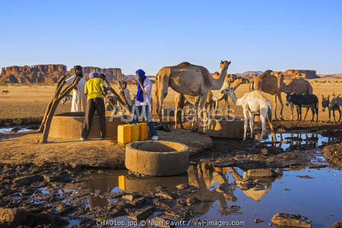 Chad, Kachabi, Ennedi, Sahara.  Drawing water from a deep well.