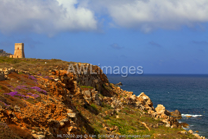 Mediterranean Europe, Malta. Historical tower on top of a hill onlooking the coast which in the past was used to guard against attacks by Muslims