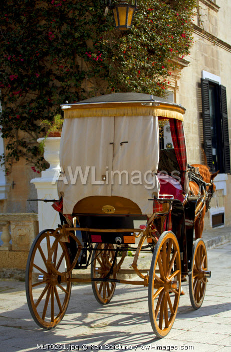 Mediterranean Europe, Malta. The typical karozzin in the streets of Mdina