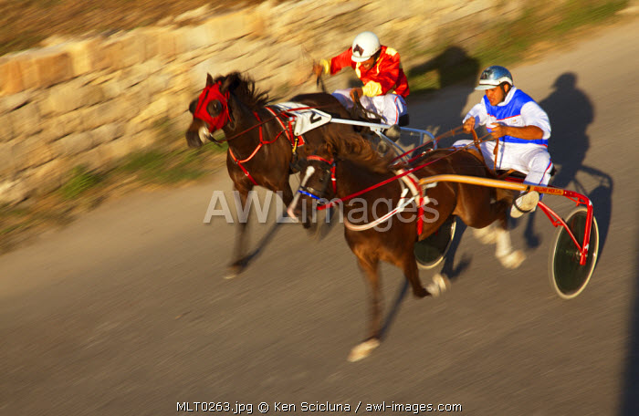 Mediterranean Europe, Malta. Horse races during the traditional feast of St Peter and St Paul known locally as l Imnarja