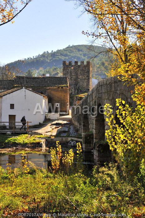 Roman bridge. Portagem, Marvao. Portugal (MR)