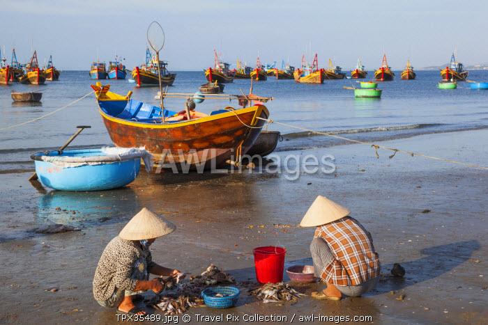 Vietnam, Mui Ne, Mui Ne Beach, Women Sorting Fishing Catch