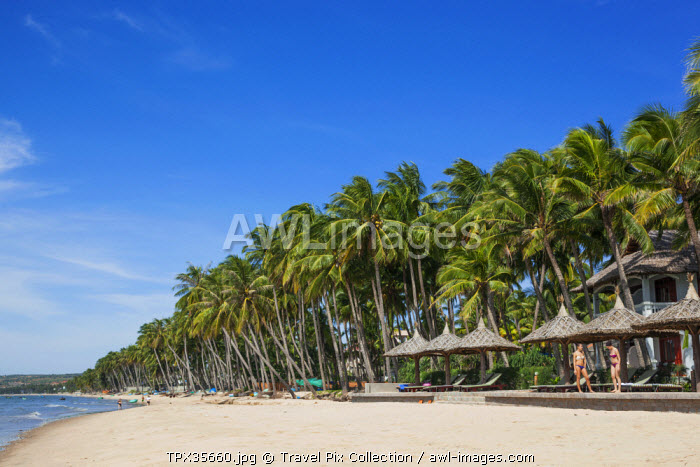 Vietnam, Mui Ne, Mui Ne Beach, Palm Trees