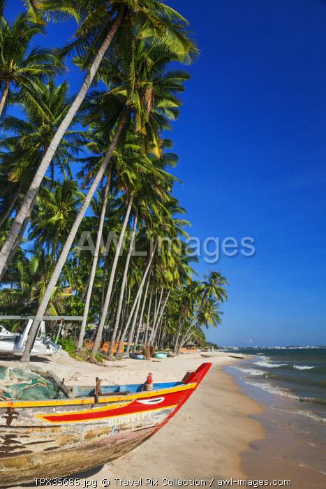 Vietnam, Mui Ne, Mui Ne Beach, Fishing Boat and Palm Trees