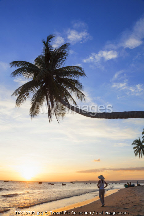 Vietnam, Mui Ne, Mui Ne Beach, Palm Trees at Sunset