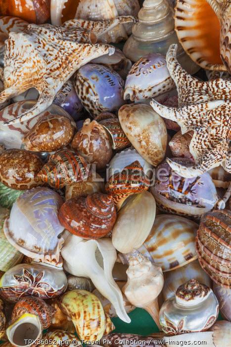 Vietnam, Nha Trang, Dam Market, Souvenir Seashells