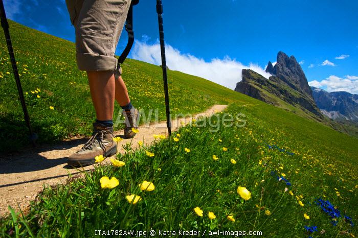 Hiking, Val Gardena, Seceda, Trentino, South Tyrol, Italy MR