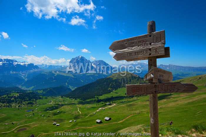Sign posts, Hiking Trail, Seceda, Val Gardena,  Trentino, South Tyrol, Italy