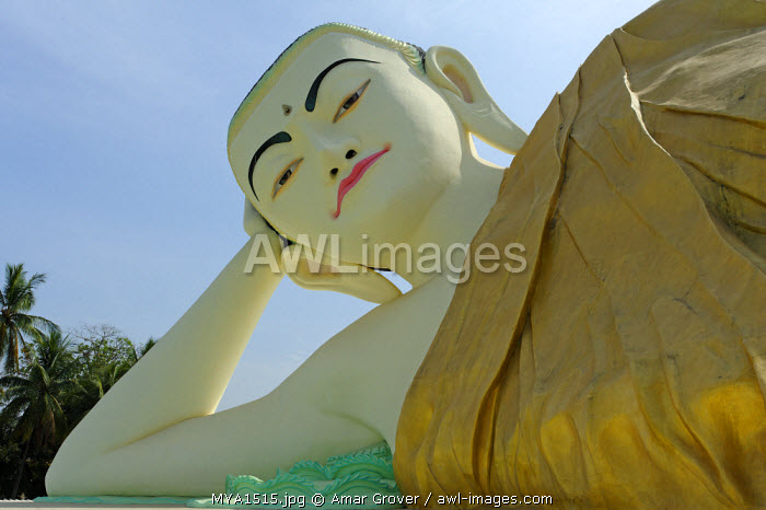 Myanmar, Burma, Bago Region, Bago. The imposing Mya Tha Lyaung Buddha, a statue of a reclining Buddha, lies in a compound adjacent to the famous Shwethalyaung Buddha statue.