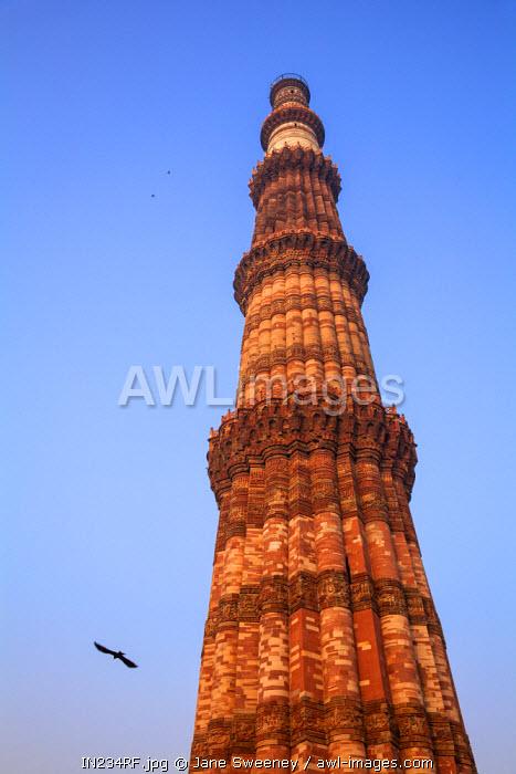 India, Delhi, India, Delhi, New Delhi, Qutub Minar