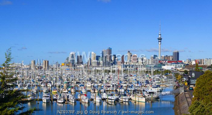 Westhaven Marina & City Skyline, Auckland, Northland, North Island, New Zealand, Australasia