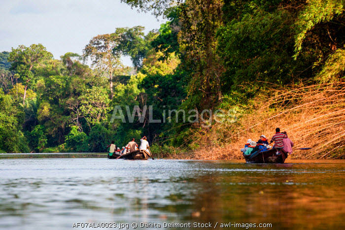 Africa, Cameroon, Kribi. Tourists in traditional pirogue boat going down Lobe River.