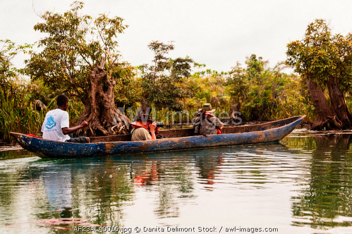 awl-images.com - Liberia / Africa, Liberia, Monrovia. Tourist taking picture from traditional pirogue boat on the Du River.