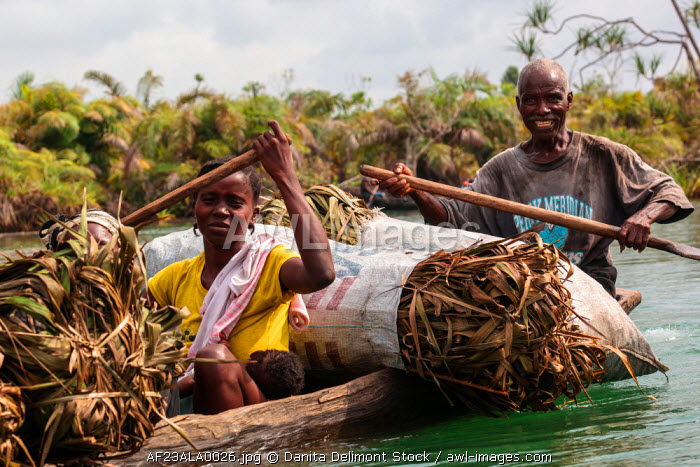 Africa, Liberia, Monrovia. Family transporting bundles of dried pandanus in traditional pirogue on the Du River.