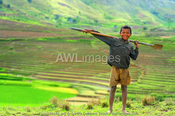 Madagascar, Ambalavao, young boy posing in front of terraced rice fields.