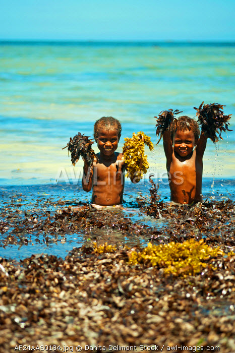 awl-images.com - Madagascar / Madagascar, Tulear, Ifaty, young children playing with seaweed at the beach.