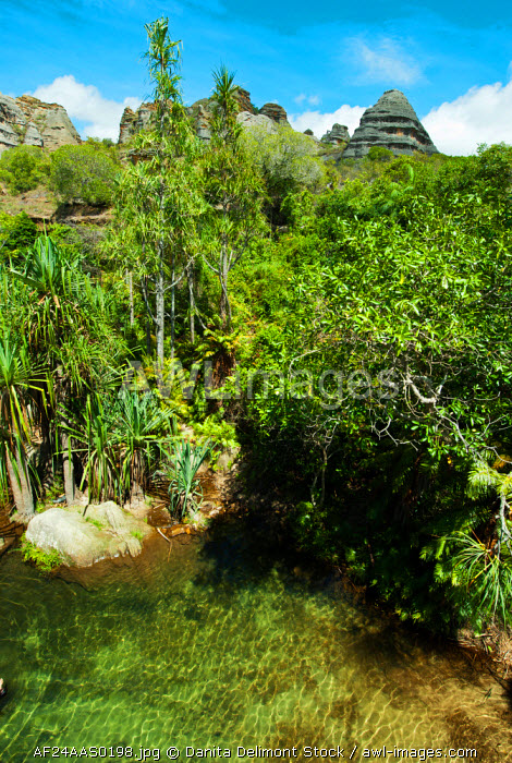 Madagascar, National Park of Isalo, green natural swimming pool in the piscine naturelle circuit.